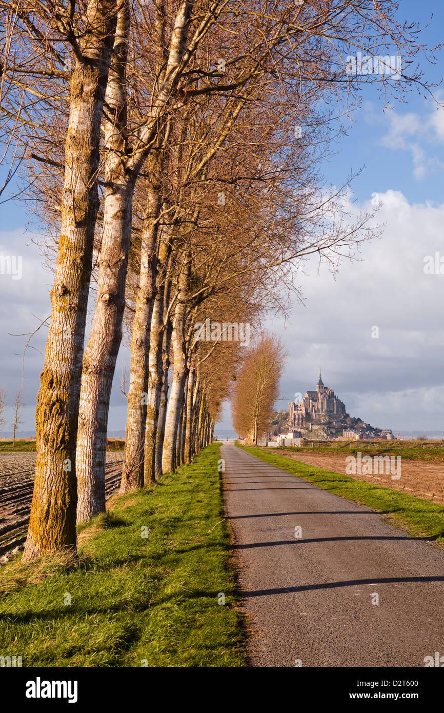 Einer von Bäumen gesäumten Allee führt in Richtung Mont Saint Michel, UNESCO-Weltkulturerbe, Normandie, Frankreich Stockfoto