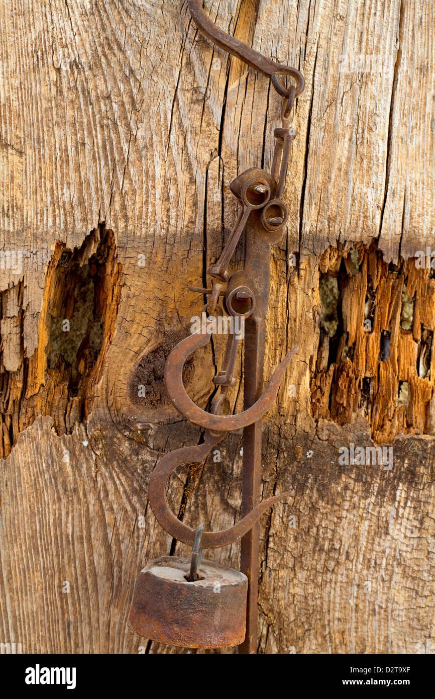 Metallic Scales Background Stockfotos Metallic Scales