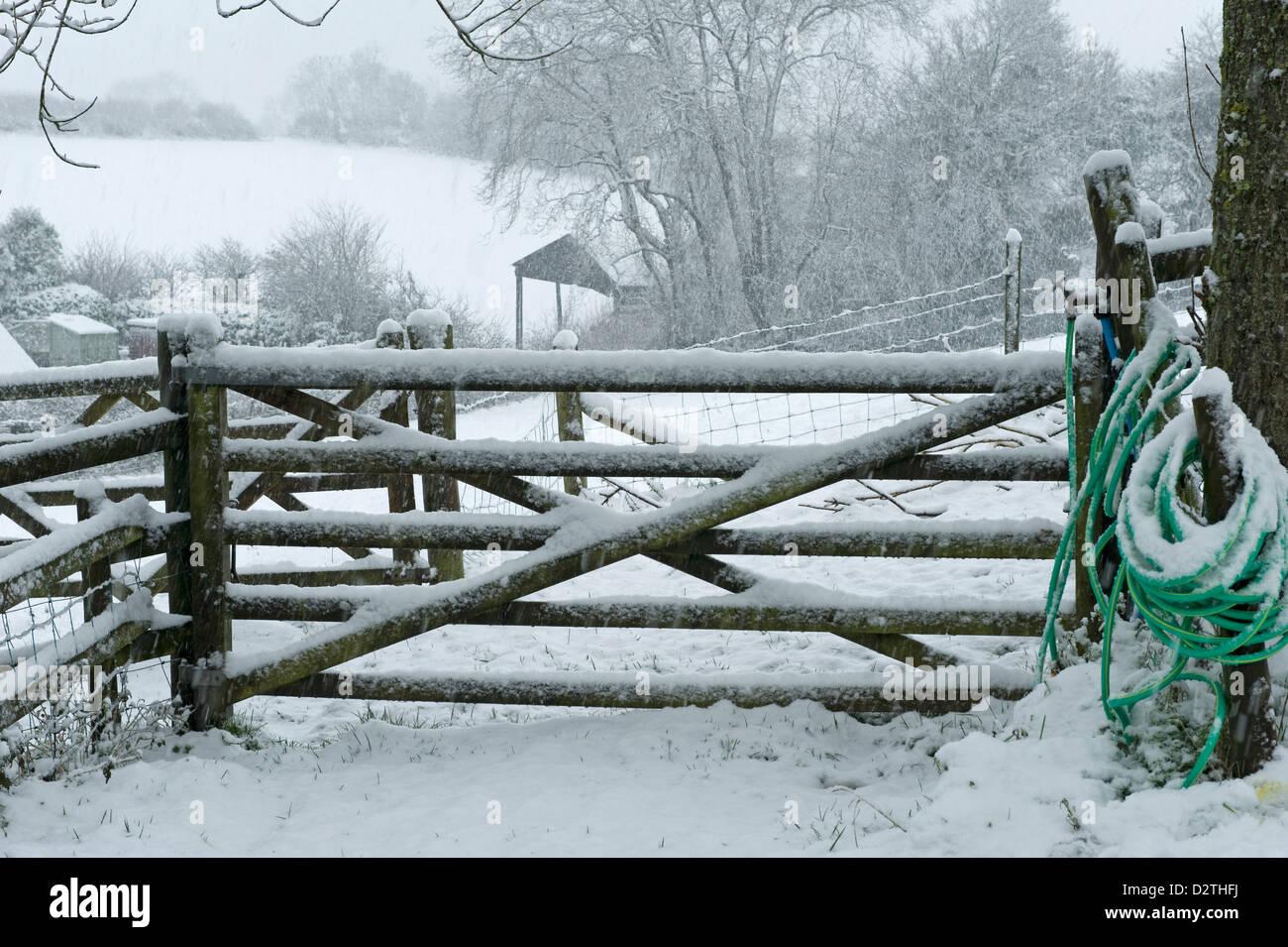 Feld-Tor und einen Schlauch für die Bereitstellung von Wasser für die Tiere in einen ordentlichen Schneesturm, Stockbild