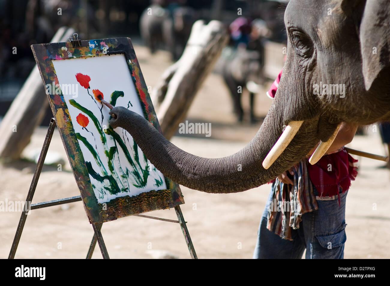 Chiang Mai, Thailand, Elefant malt mit seinem Ruessel Blumen auf ...