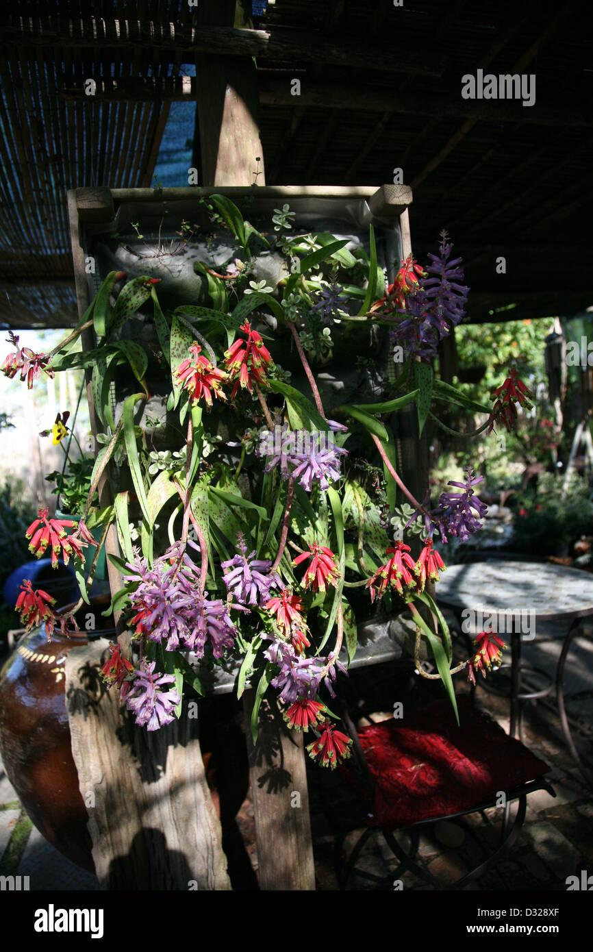 Ausgezeichnet Dekorativer Florist Draht Bilder - Elektrische ...