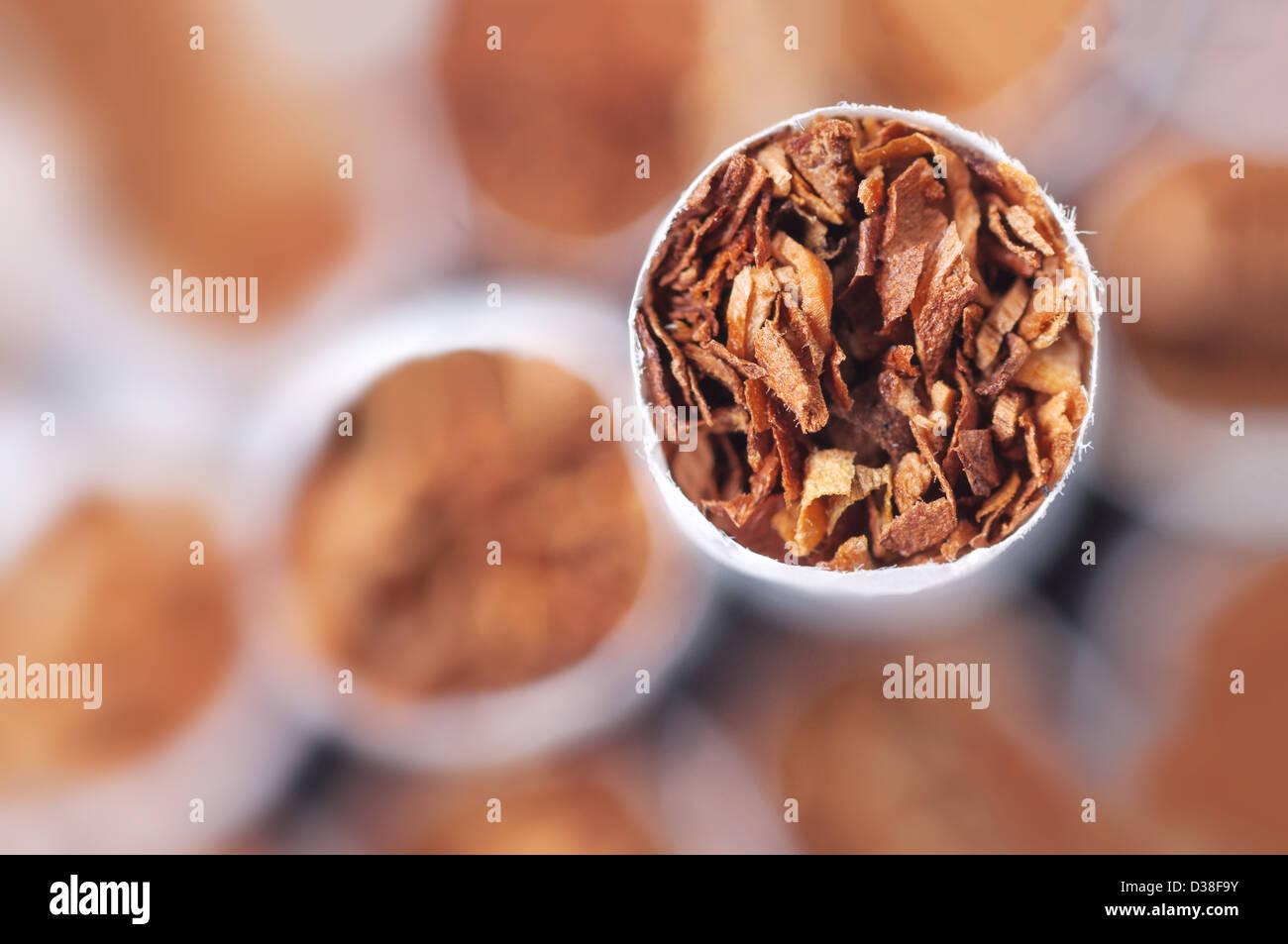 Tabak in Zigaretten hautnah Stockbild