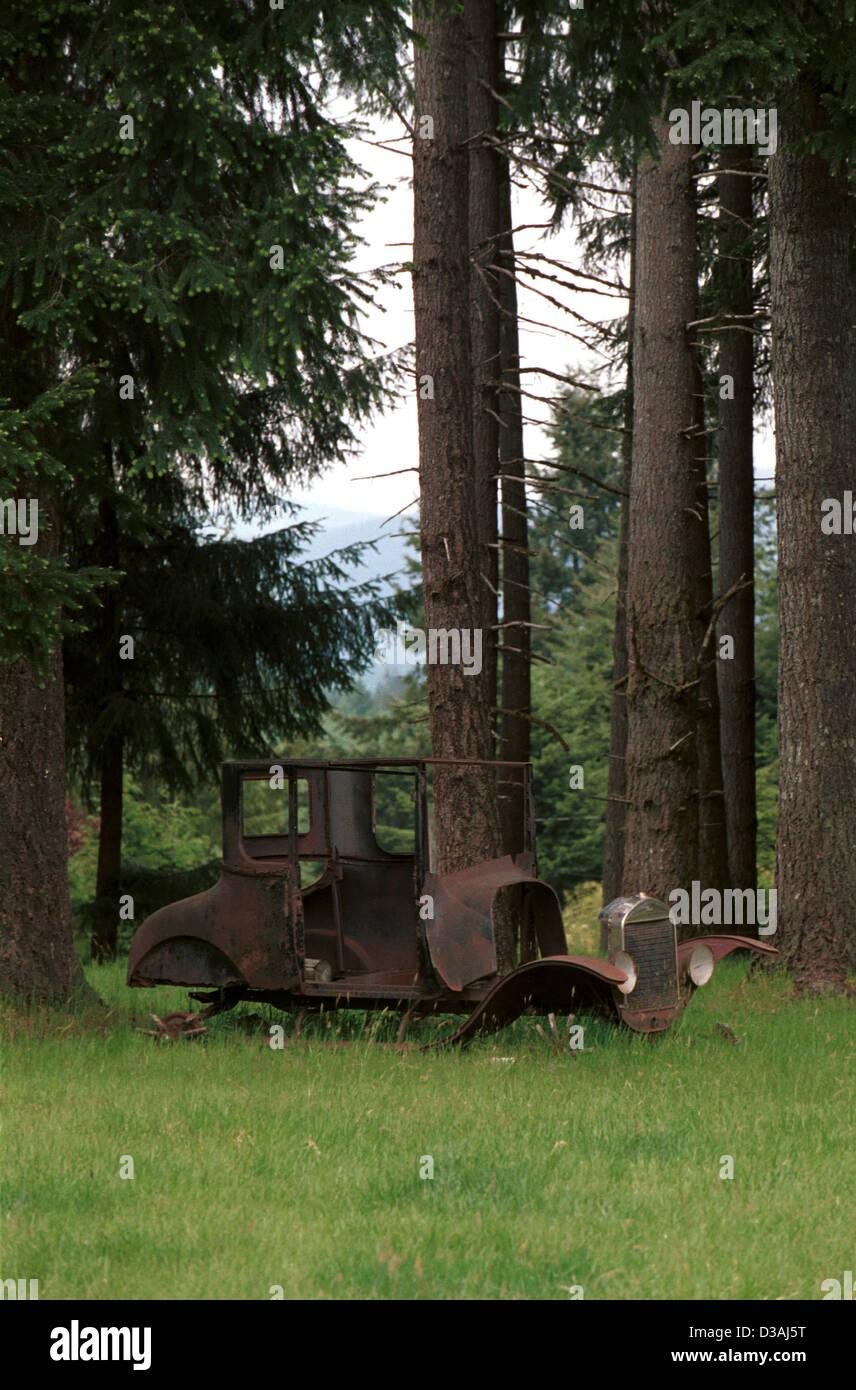Eine antike sitzt Model A Ford in einem Wald von Tanne Bäume Pacific Northwest Oregon, USA, Stockbild