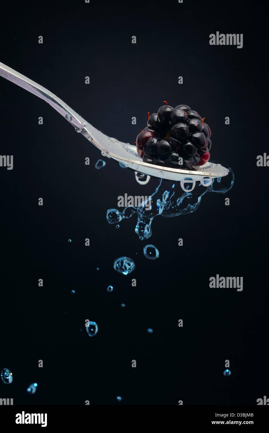 Teelöffel mit Blackberry und Tropfen natürliches Mineralwasser aus schwarzem Hintergrund. Stockbild