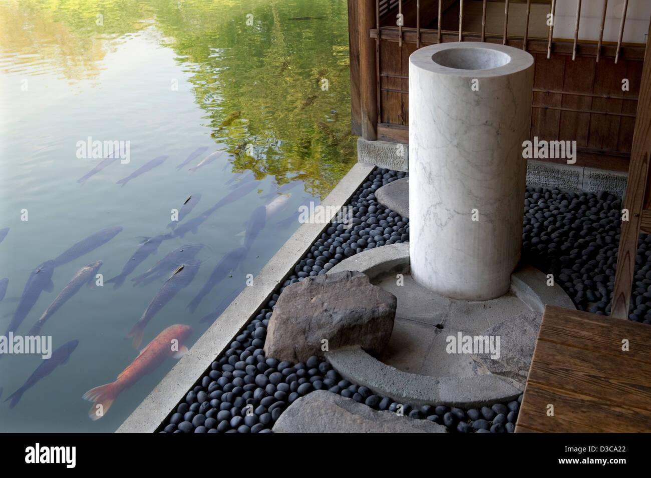Koi Karpfen Schwimmen Im Teich Neben Fluss Stein Terrasse Und Holz