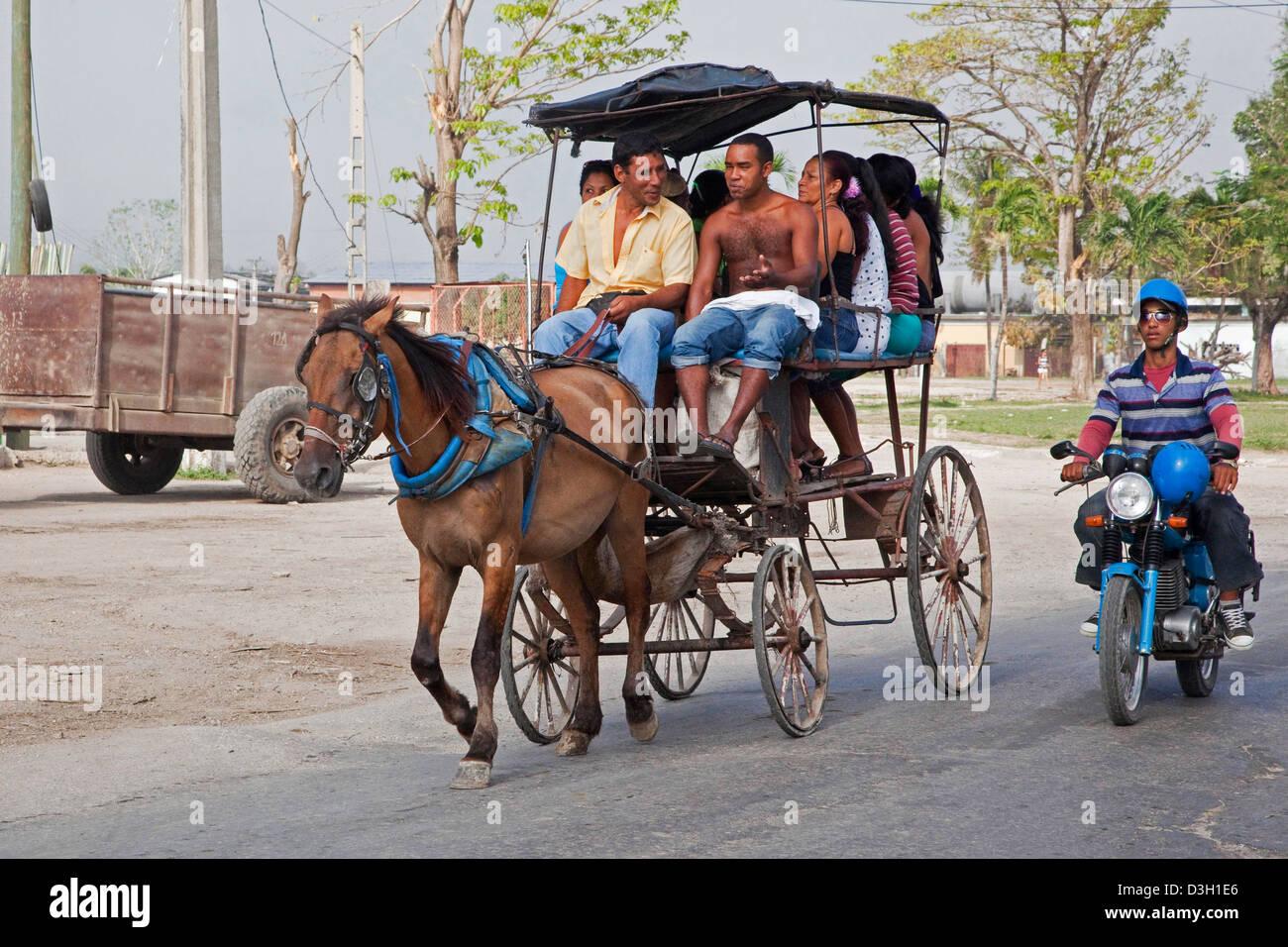 Öffentliche Verkehrsmittel mit Pferd und Wagen in Straße, Granma, Kuba, Karibik Stockbild