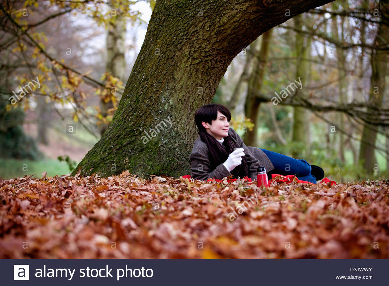 Eine Frau sitzt unter einem Baum hält ein heißes Getränk im Herbst Stockbild