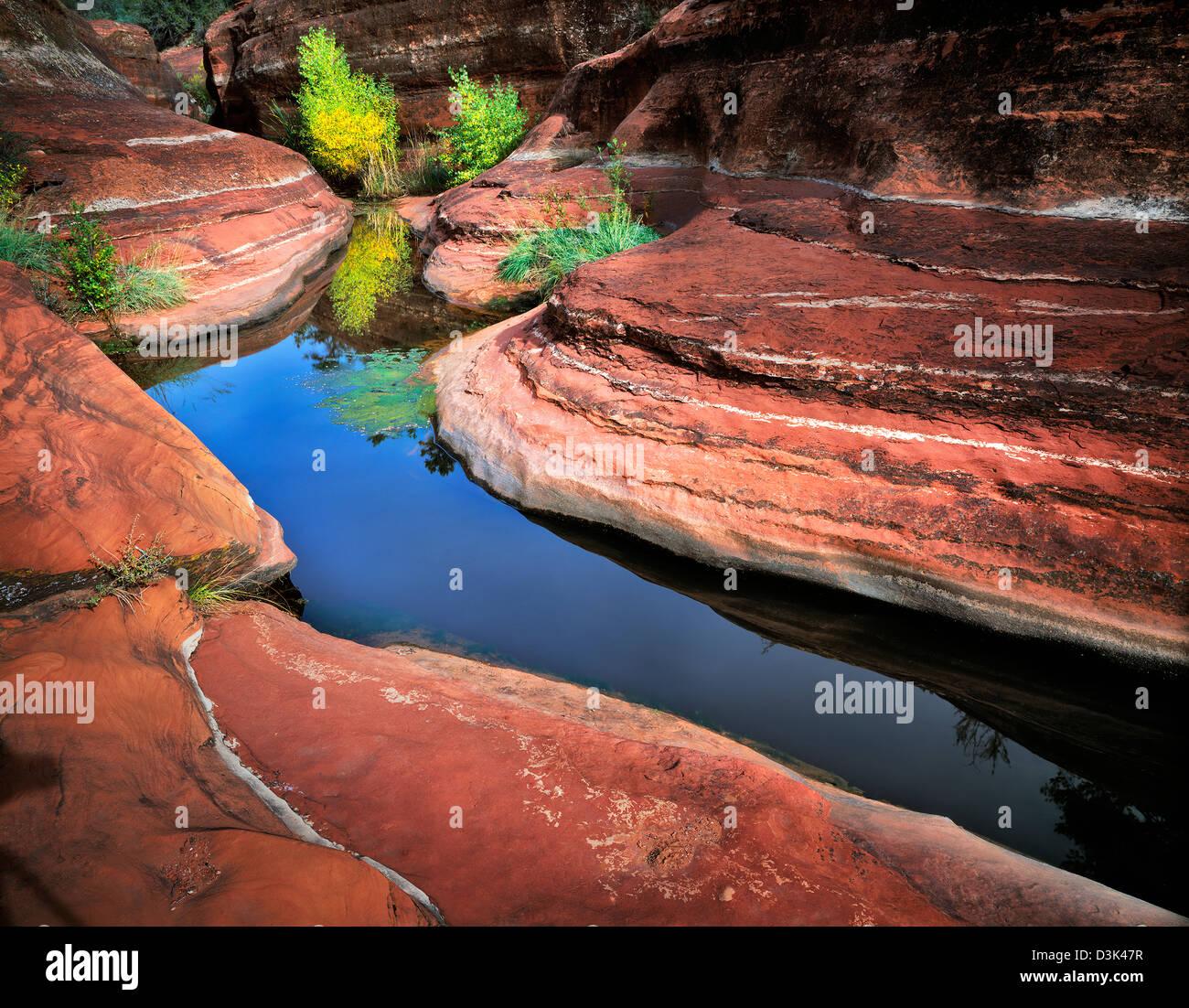 Kleiner Pool Im Roten Felsen Der Unbenannten Bach Red Rock Secret