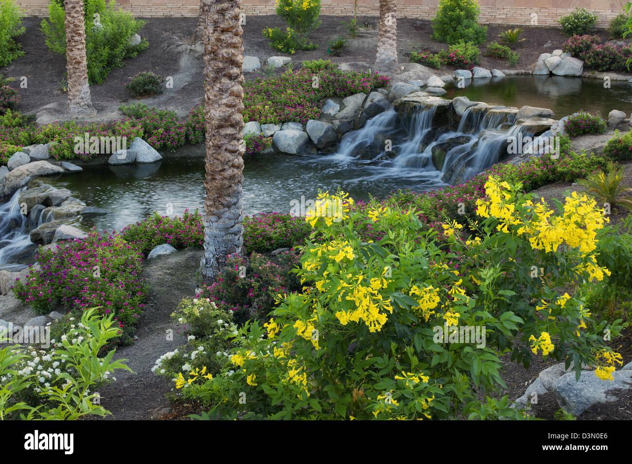 wasserfalle im garten, wasserfälle im garten. palm desert, kalifornien stockfoto, bild, Design ideen
