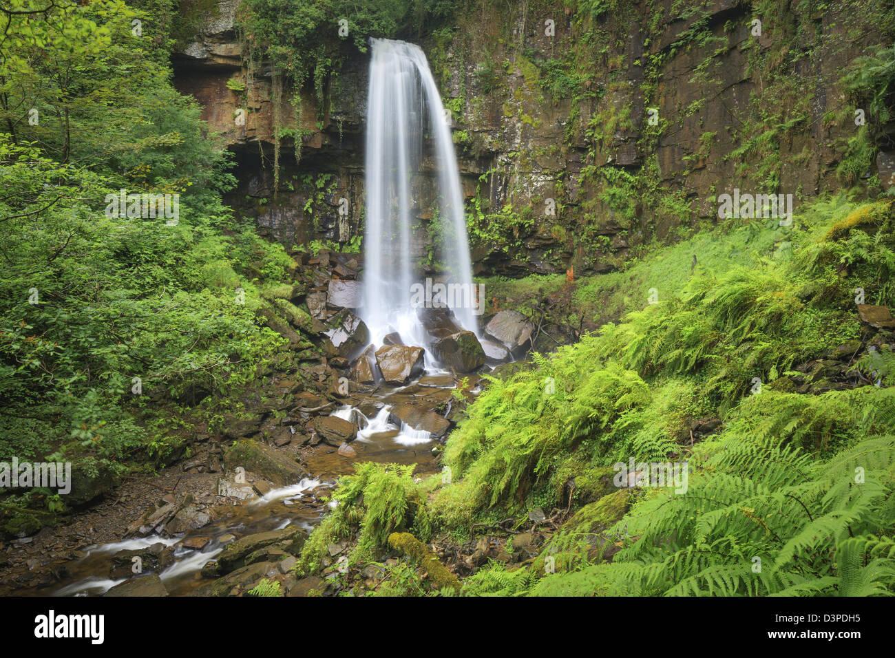 Melin Gericht (auch Melin Cwrt) Wasserfall Resolven Vale of Neath Neath & Port Talbot, South Wales UK Stockbild