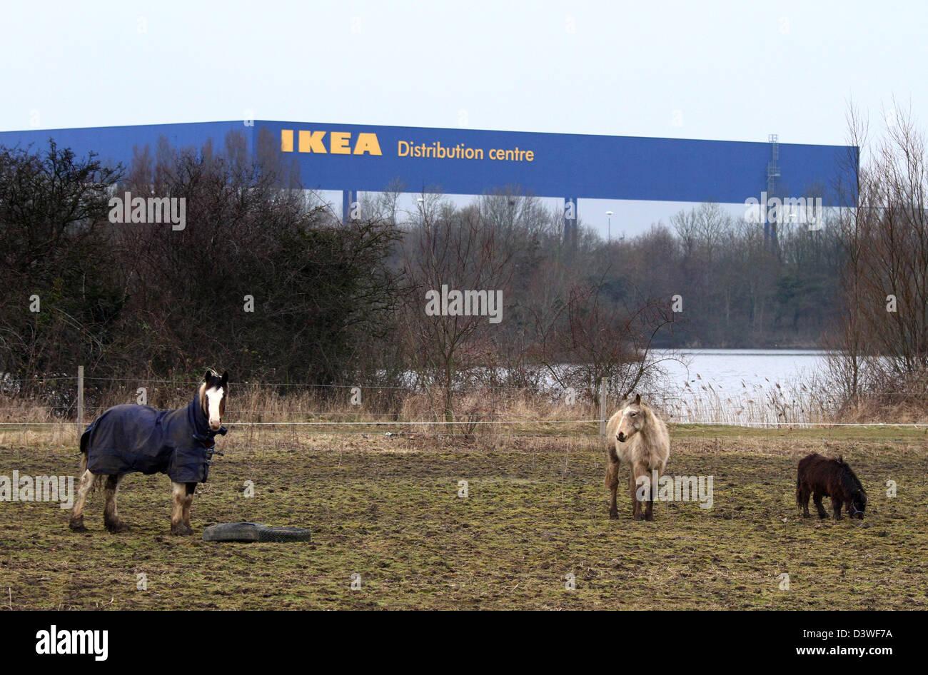 pferde in einem feld mit einem ikea-distributionszentrum hinter