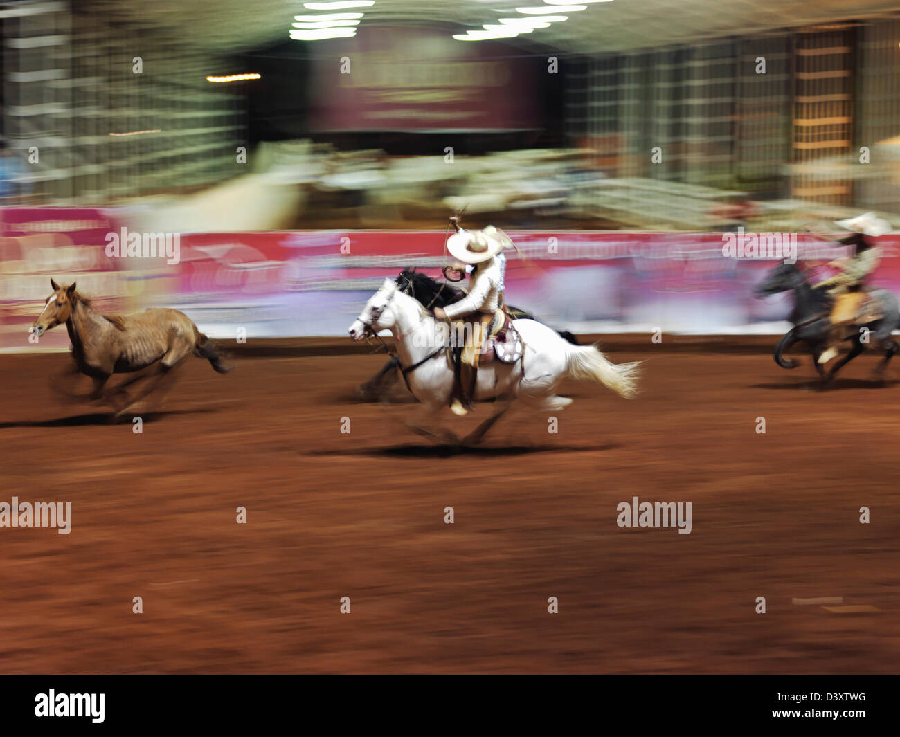 Mexiko, Jalisco, Guadalajara, mexikanische Charro Teilnahme an Charreadas, eine Art von rodeo Stockbild