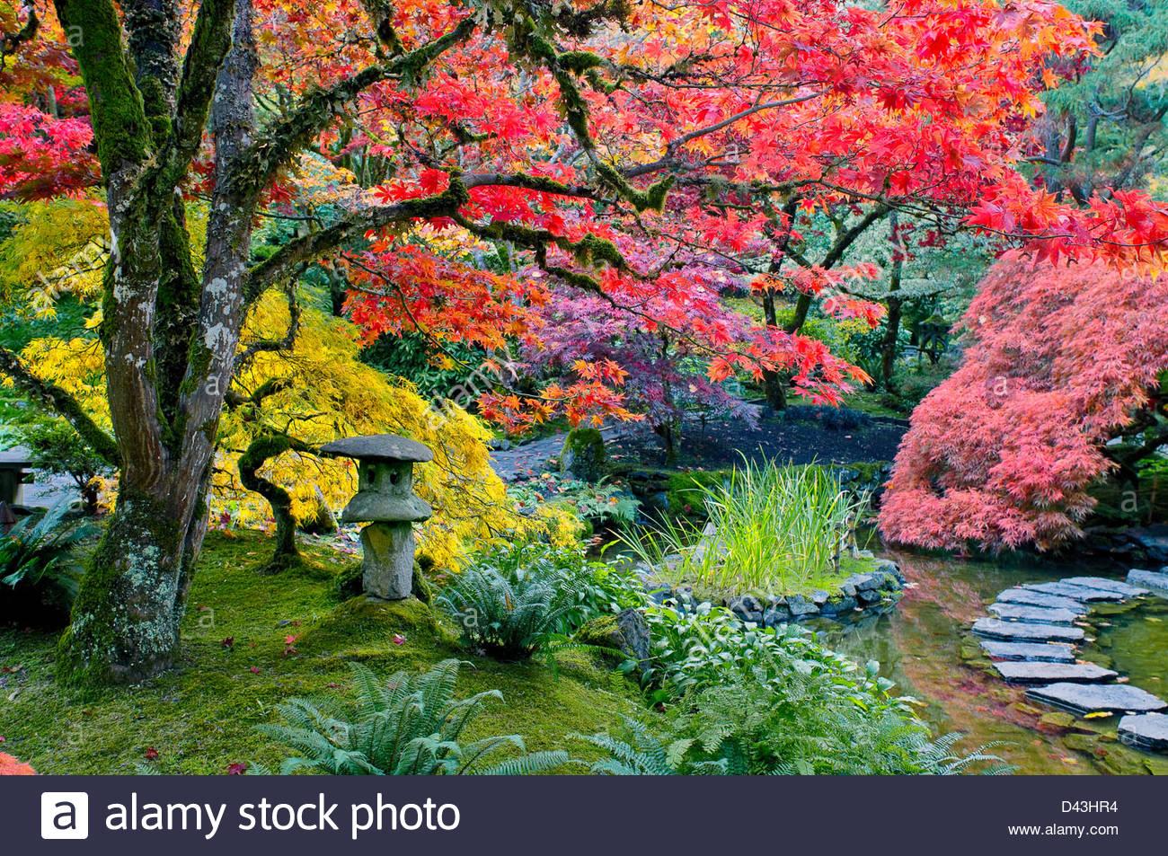 Butchart gardens herbst farbe japanischer garten for Laterne dekorieren herbst