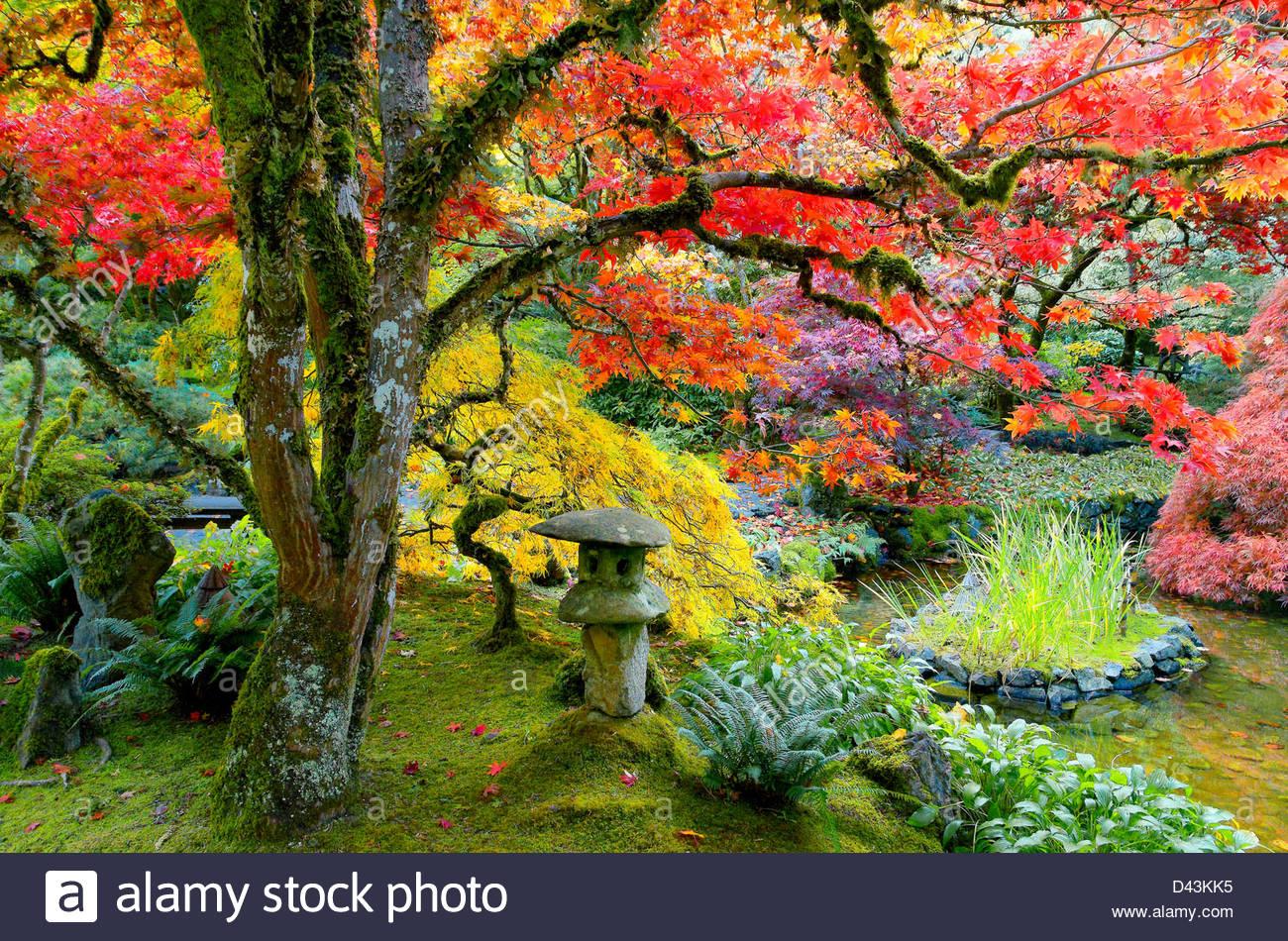 Der japanische Garten, Butchart Gardens Stockbild