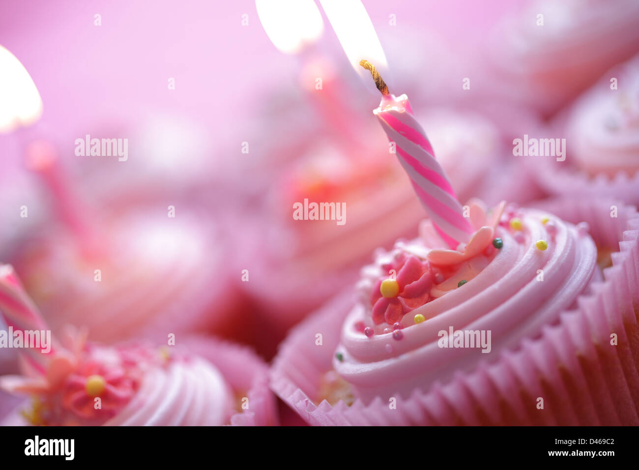 Geburtstag-Muffins Stockbild