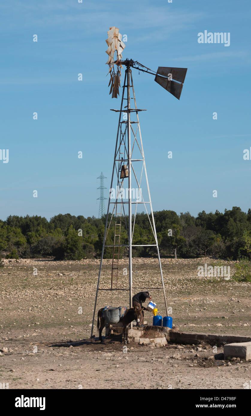 Man sammelt Wasser vom Wind pumpte Wasser in ländlichen Marokko Stockbild