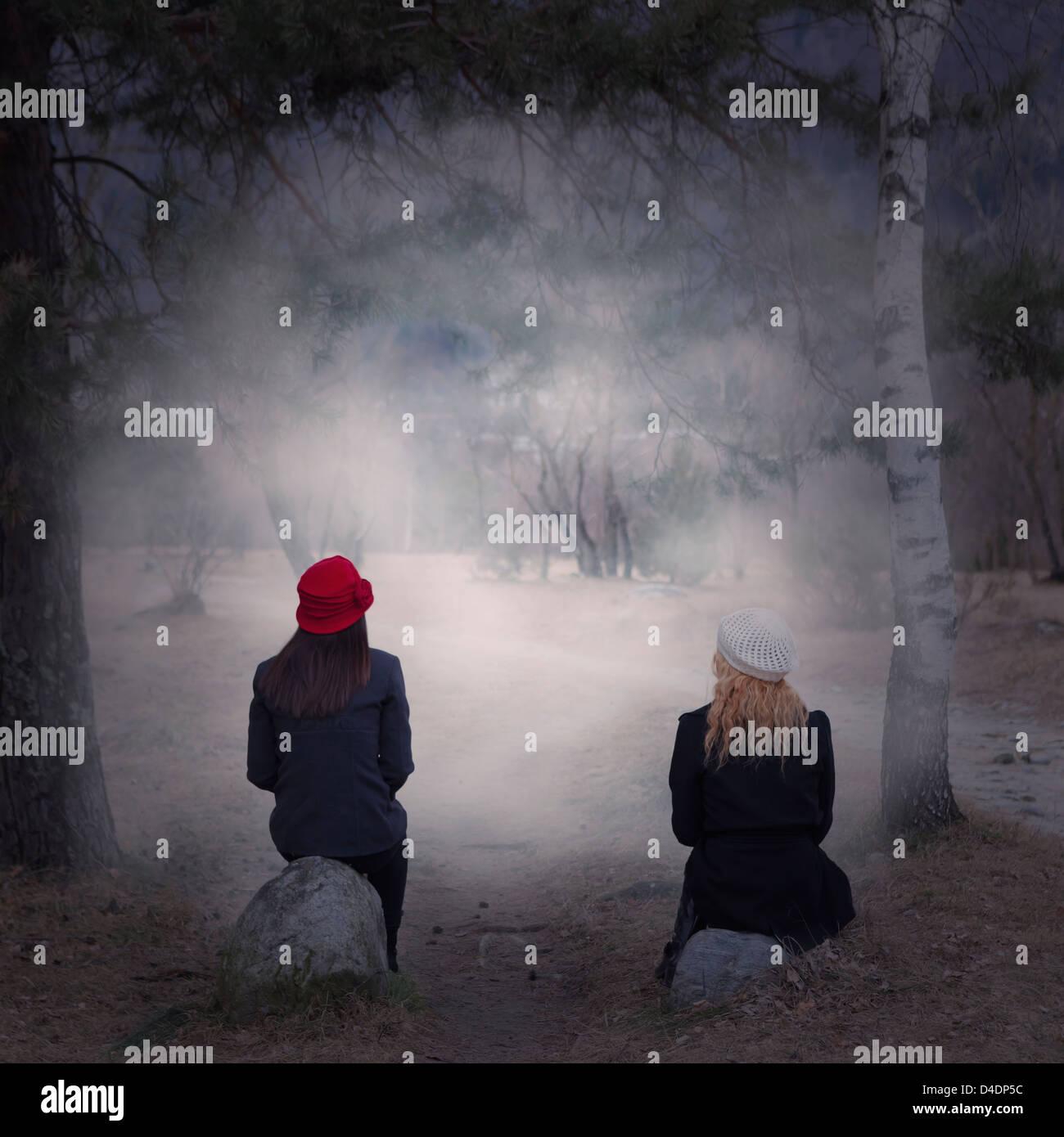 zwei Mädchen sitzen auf Steinen in einem Wald Stockbild