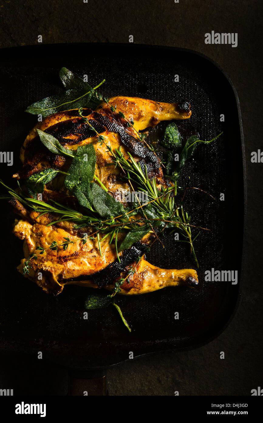 Pan Grilled Baby Chicken mit Kräutern von Marcello Russodivito, Chef-Besitzer von Marcellos Gruppe vorbereitet. Stockbild