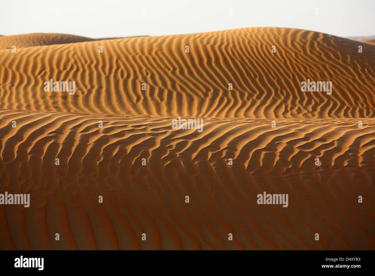 Sanddünen bei Sonnenaufgang, Arabische Wüste, Dubai, Vereinigte Arabische Emirate Stockbild