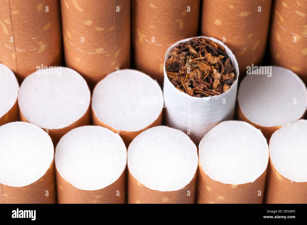 Tabak in Zigaretten mit einem braunen Filter hautnah Stockbild