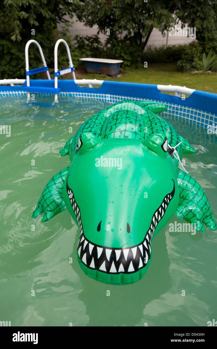 Wroclaw, Polen, ein Kautschuk-Krokodil in aufblasbaren Pool im ...