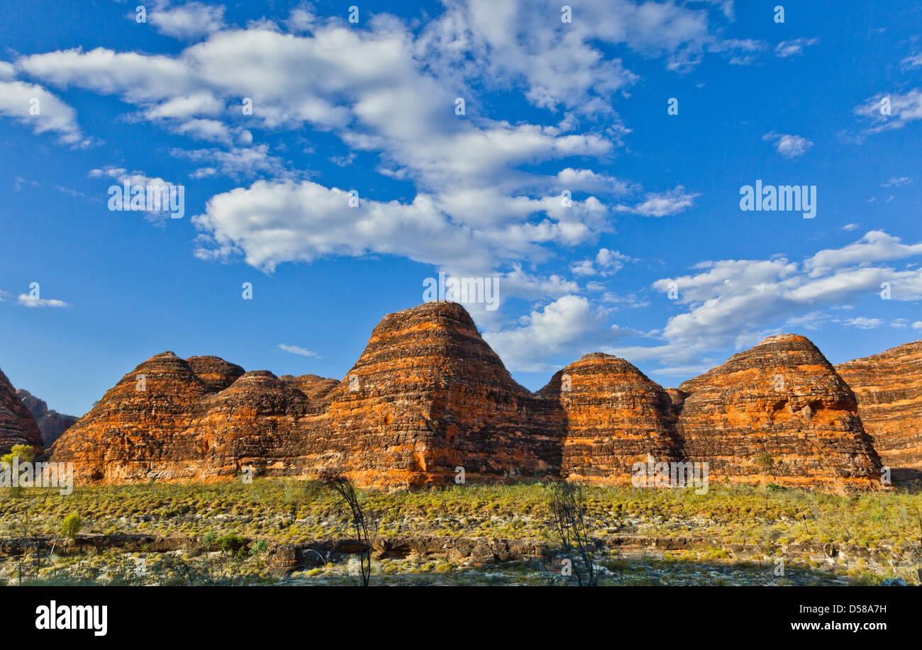 Bungle Bungle Nationalpark Purnululu, Blick auf den charakteristischen Bienenstock geformt Sandstein Kuppeln, Western Stockbild