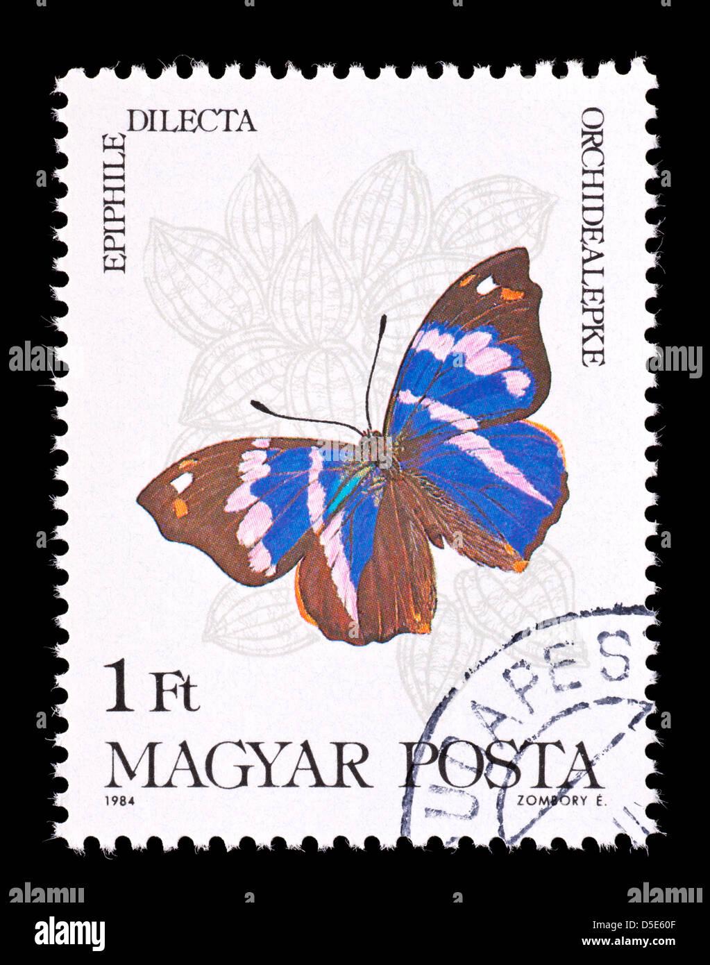 Briefmarke Aus Ungarn Darstellung Einen Tropischen Schmetterling Epiphile Dilecta Stockbild