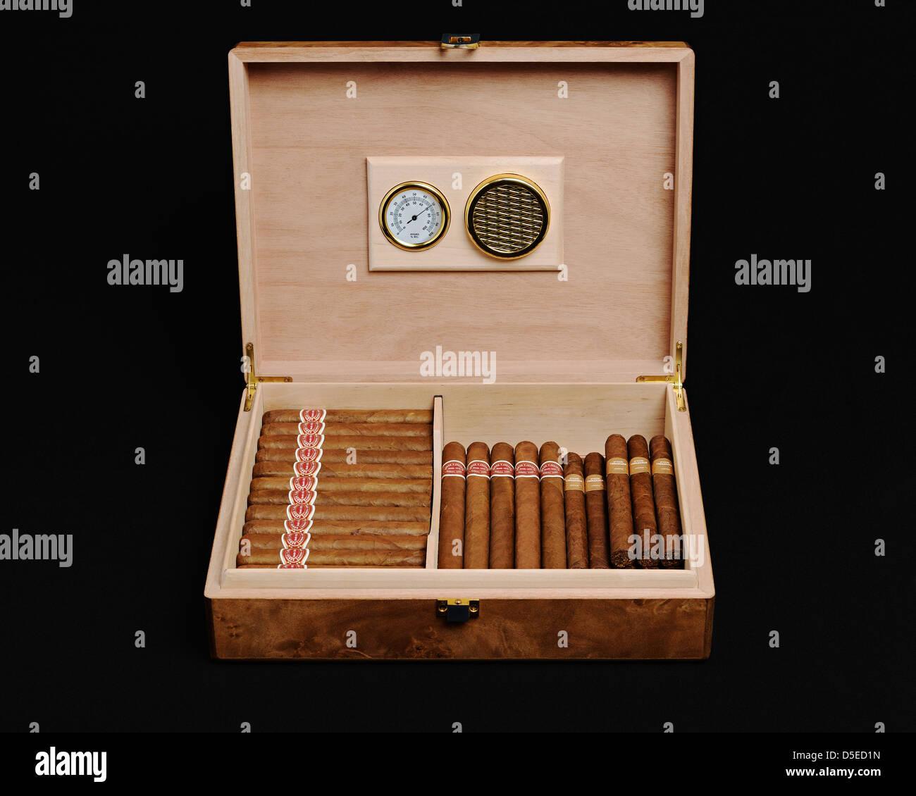 Zigarren Humidor Stockbild