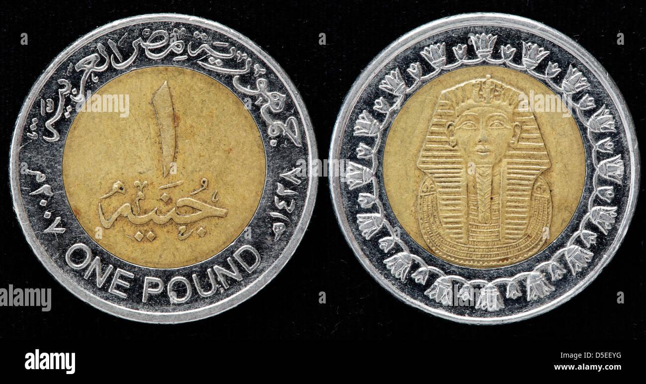 1 Pfund Münze ägypten 2008 Stockfoto Bild 55023460 Alamy