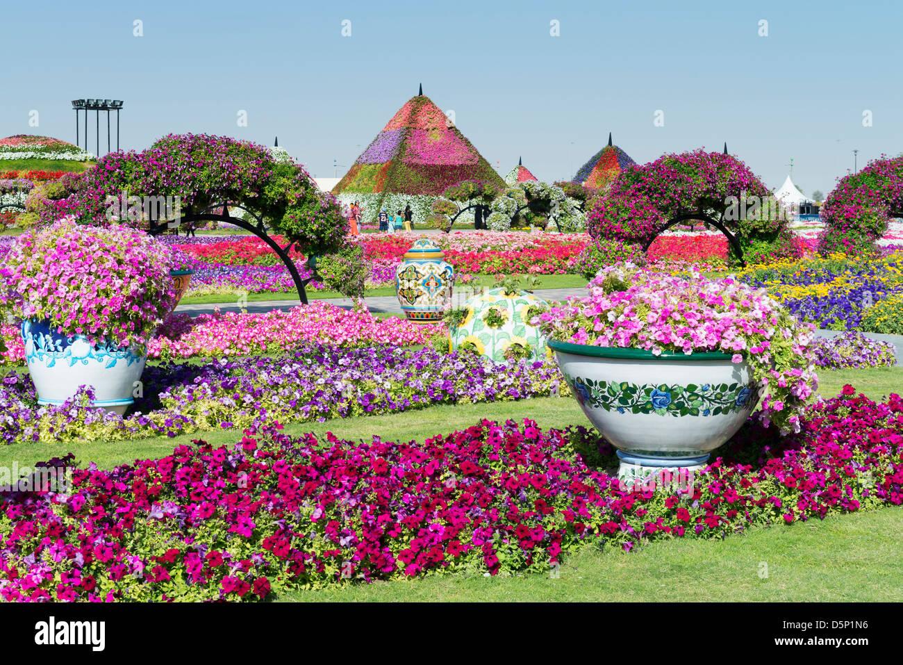 Miracle Garden in Dubai, eröffnet im März 2013 und beanspruchte, weltweit größten Blumengarten; Stockbild