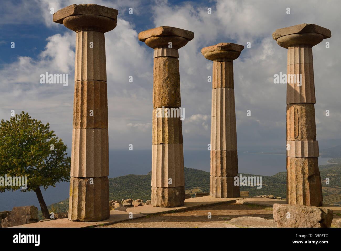 Quitte Baum und dorischen Säule Ruinen der Tempel der Athene auf die Ägäis Küste in Assos behramkale Stockbild