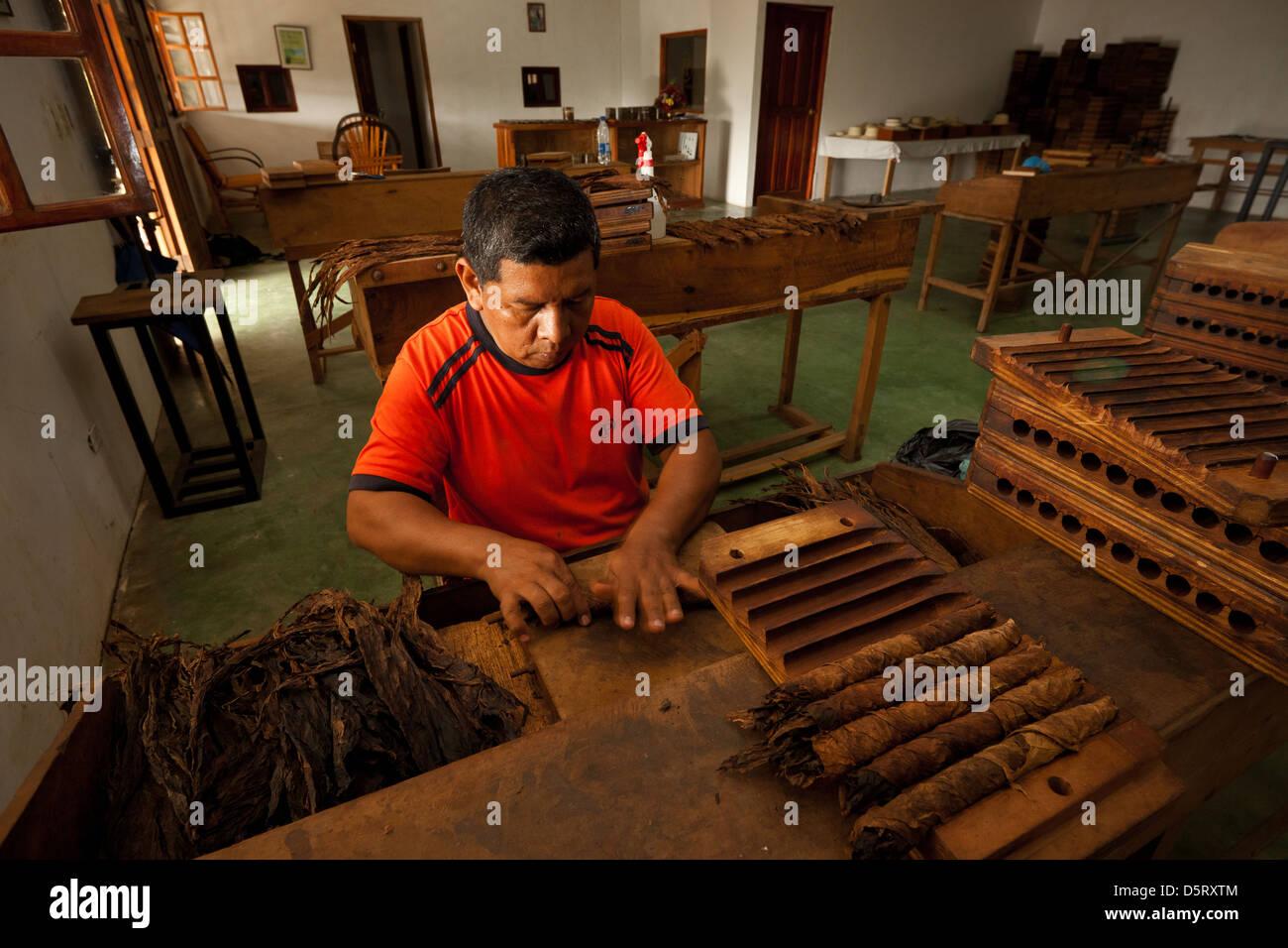Zigarren in der Herstellung bei Joyas de Panama Zigarrenfabrik, La Pintada Dorf, Cocle Provinz, Republik von Panama. Stockbild