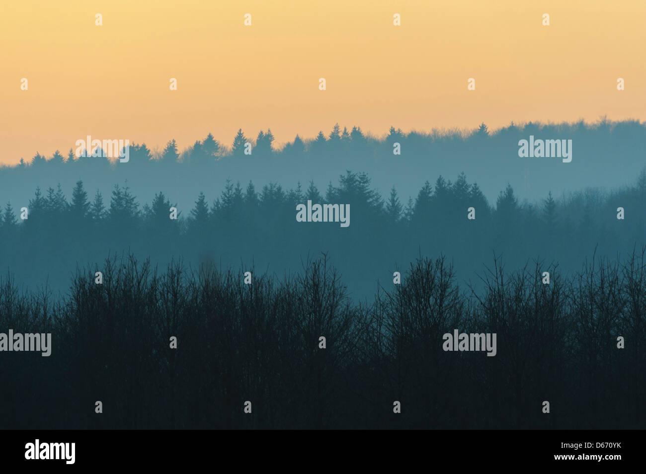 Abendstimmung im Solling, Weserbergland, Landkreis Holzminden, Niedersachsen, Deutschland Stockfoto
