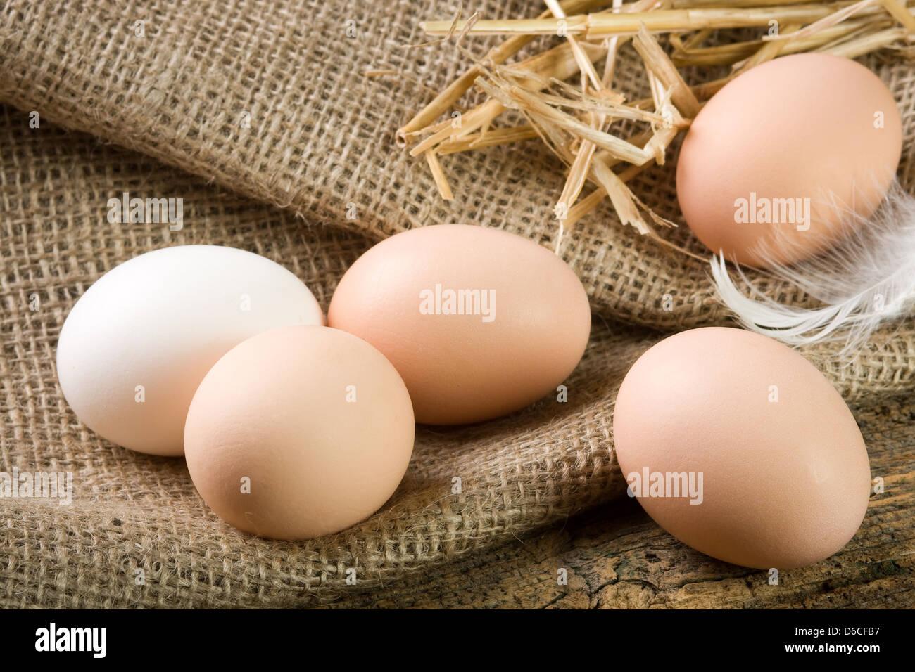 Frischen Eiern vom Bauernhof Stockbild