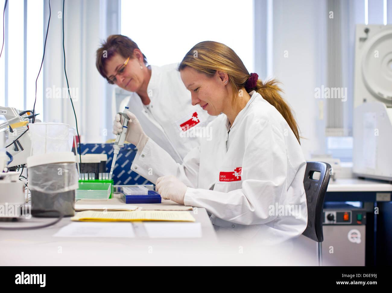 Mitarbeiter des Gewebes Typisierung Labors DKMS Life Science Lab extrahieren DNA aus einer Gewebeprobe in Dresden, Stockbild