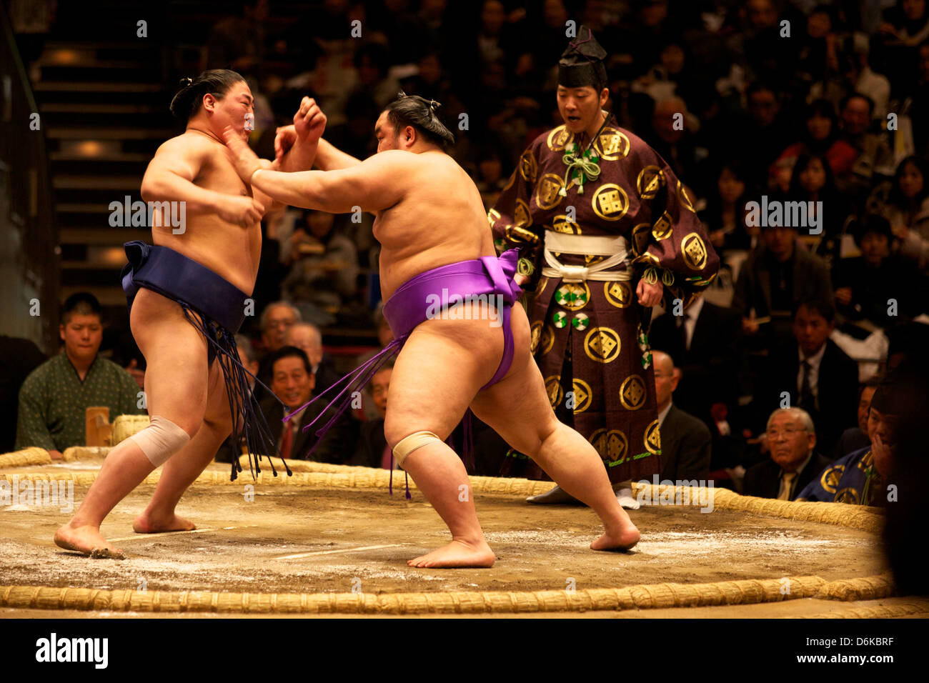 Sumo-Ringen Wettbewerb auf der Kokugikan Stadion, Tokio, Japan, Asia Stockbild
