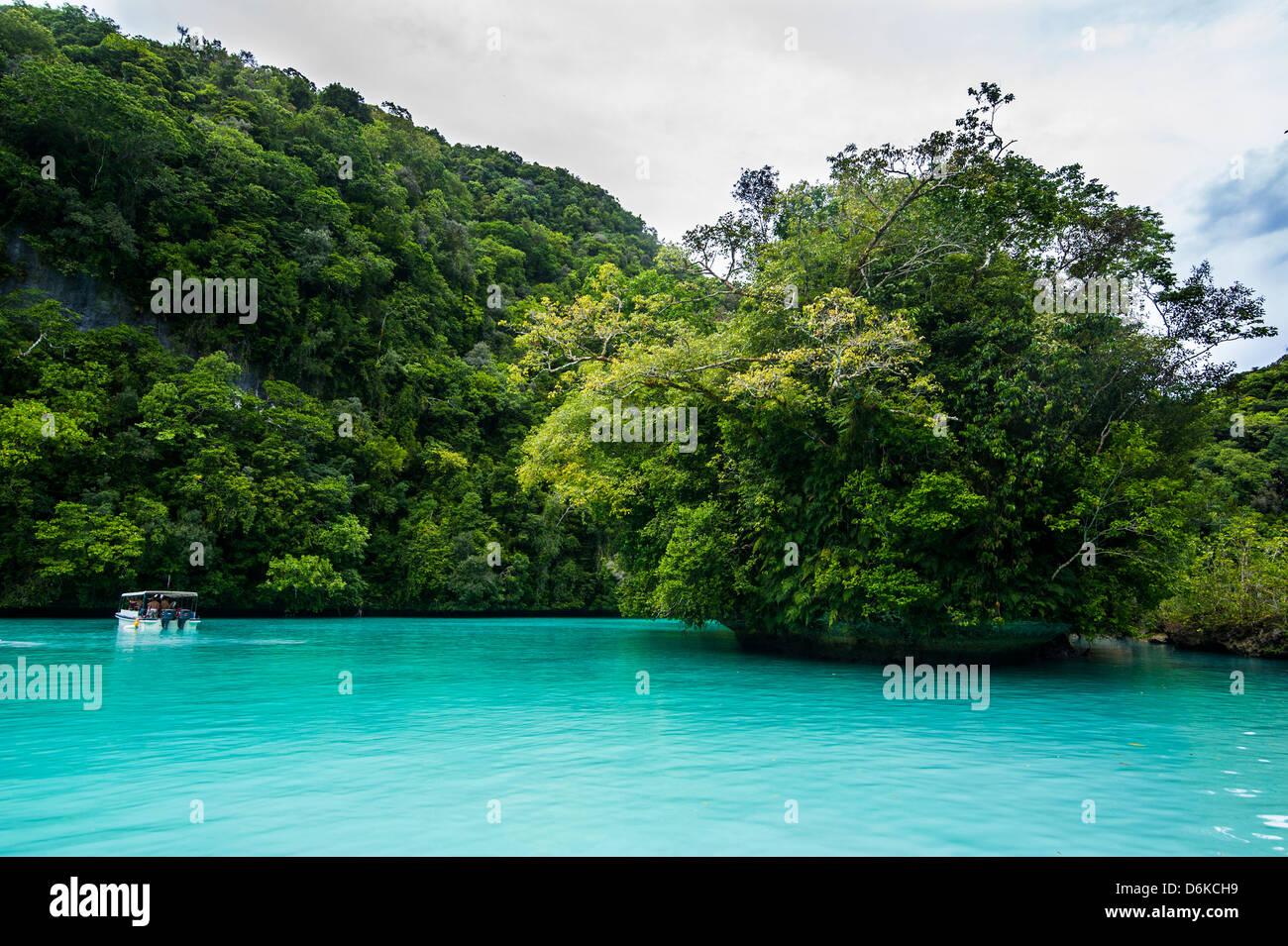 Türkisfarbenes Wasser in die Rock Islands, Palau, Central Pacific, Pazifik Stockbild