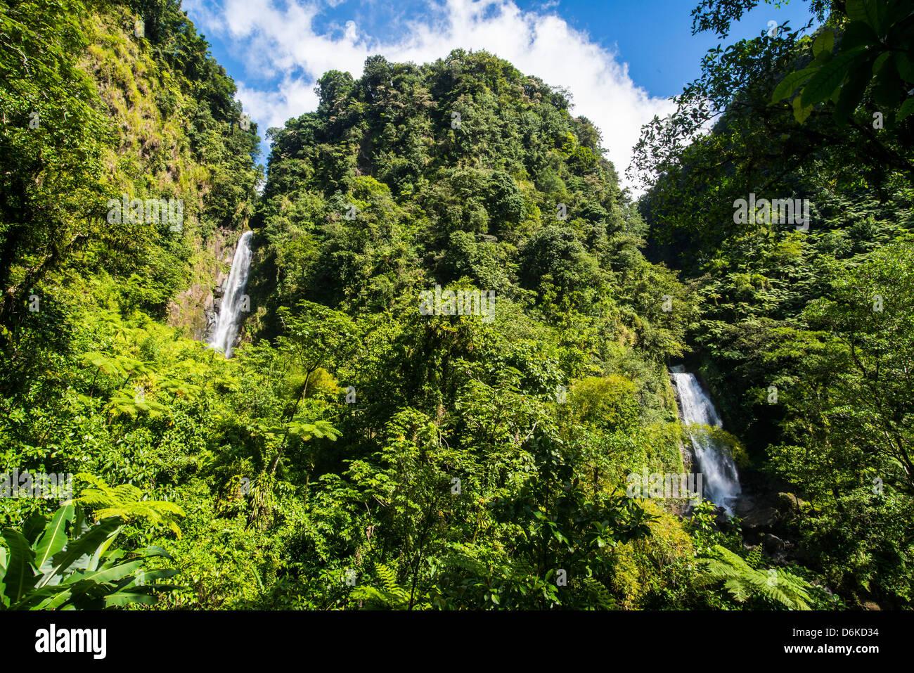 Trafalgar Wasserfälle, Morne Trois Pitons National Park, UNESCO World Heritage Site, Dominica, Karibik, Karibik, Stockbild