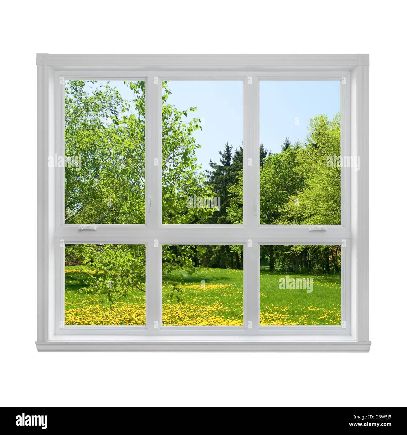 Frühjahr Löwenzahn Rasen und grünen Bäumen, die durch das Fenster gesehen. Stockbild