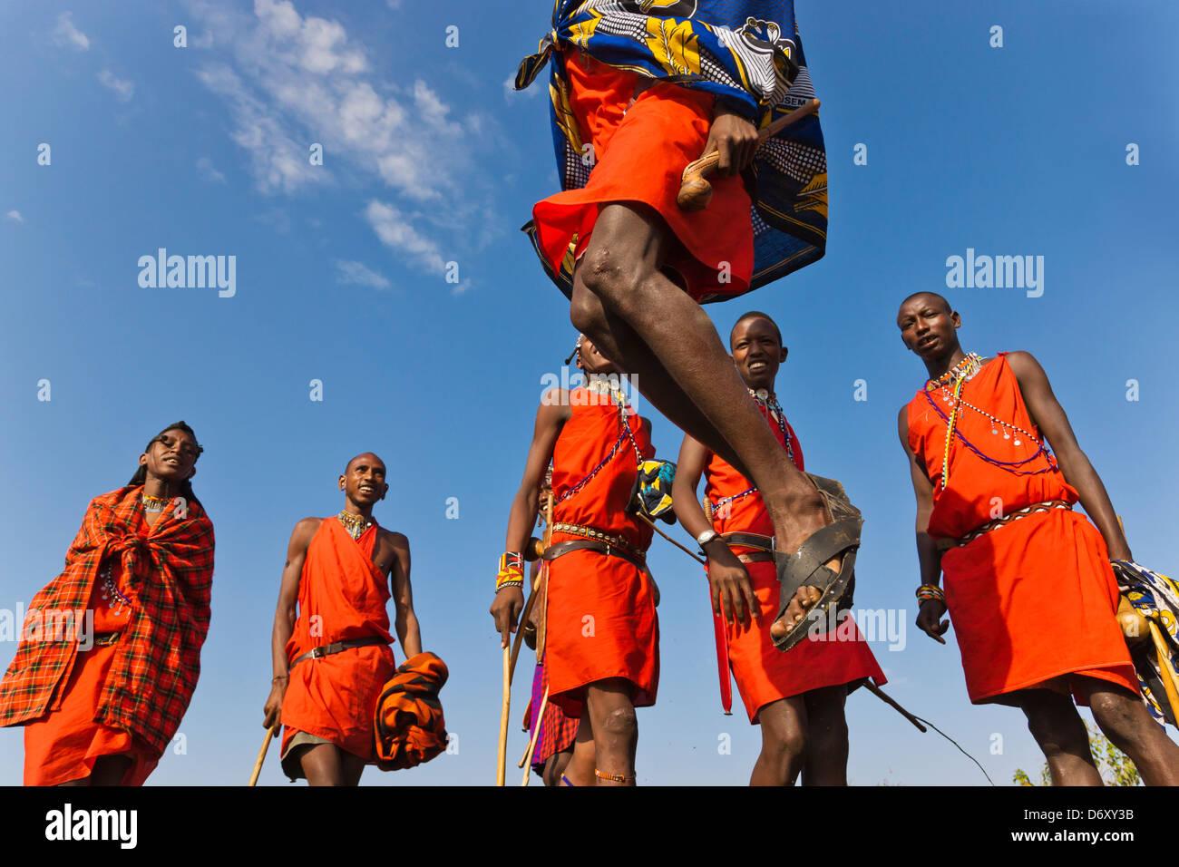Masai Stammesmitglieder Durchführung springen tanzen, Masai Mara, Kenia Stockbild