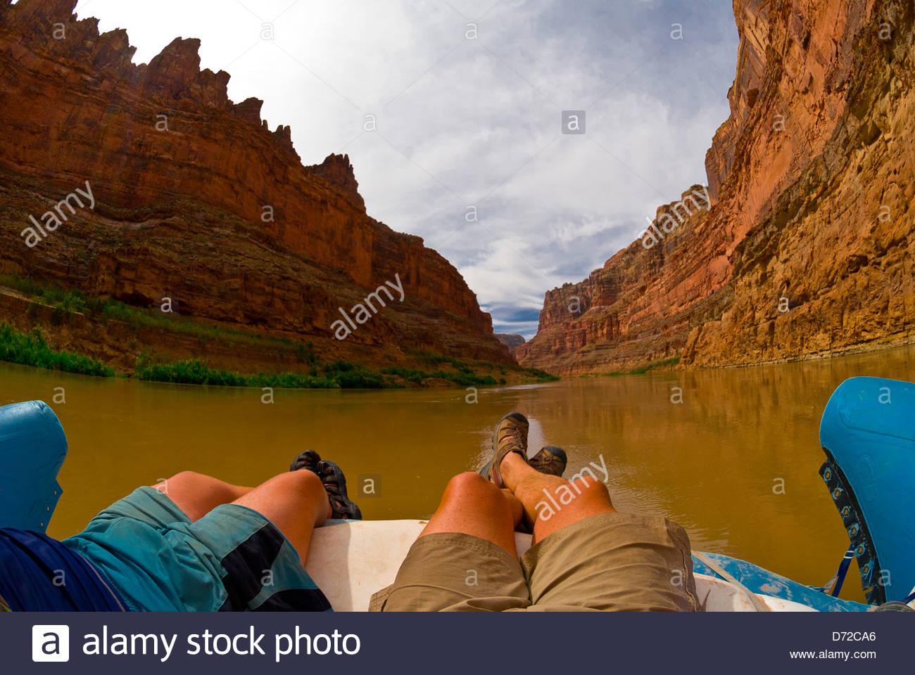 Bucht-Canyon, Colorado River, Glen Canyon National Recreation Area, Utah, USA Stockfoto