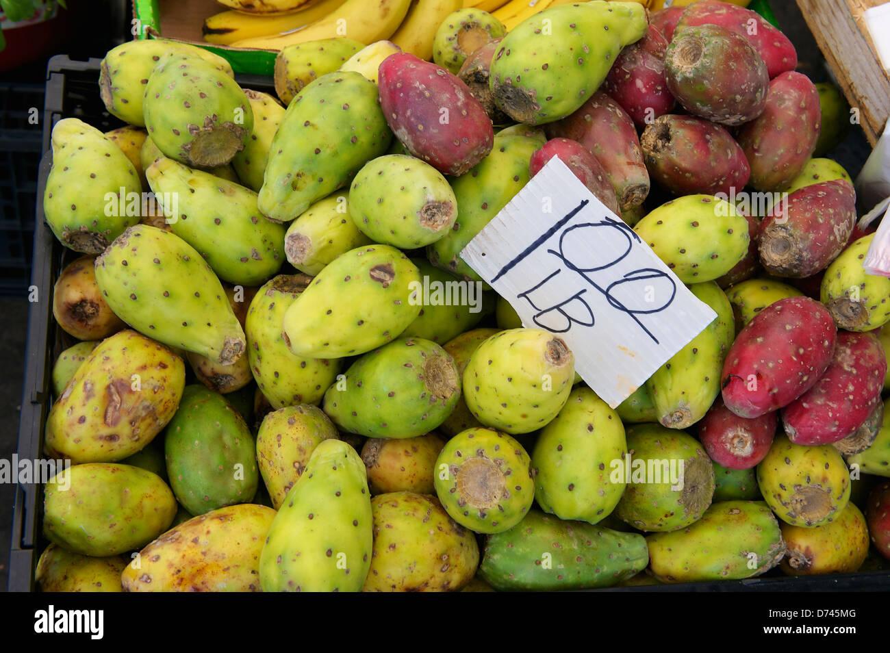 Stachelige Birne zum Verkauf auf dem Bauernmarkt. Davis, Kalifornien Stockbild