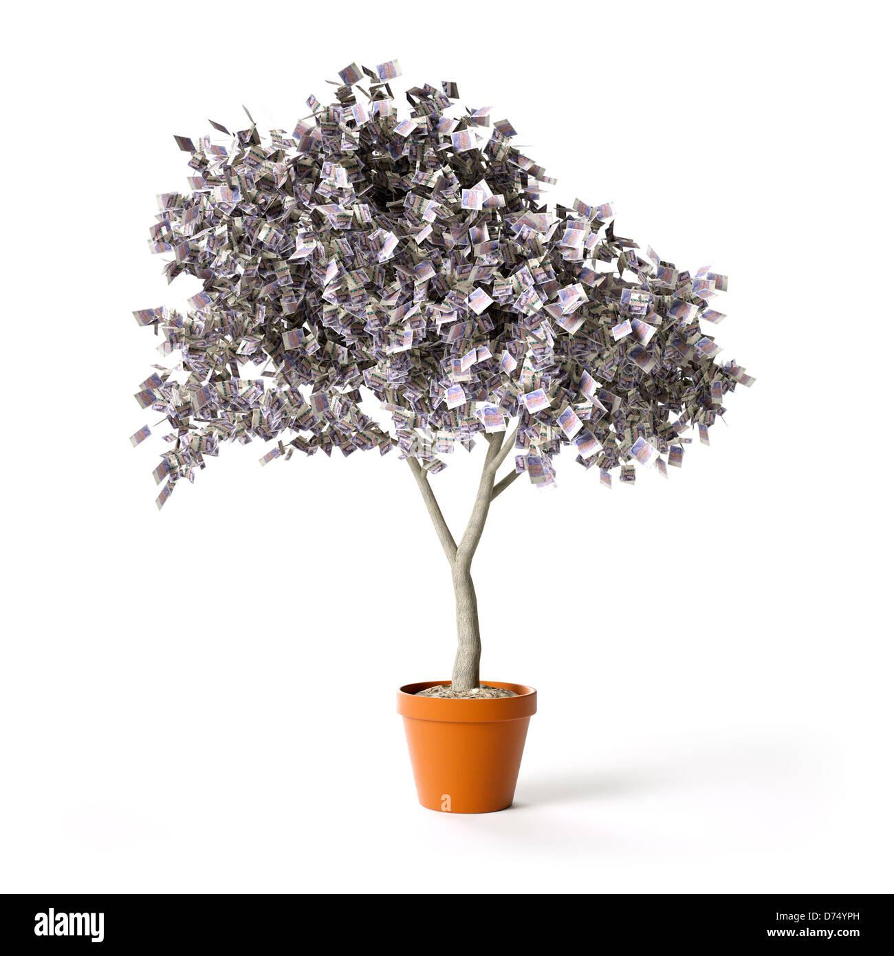 Geld von 20 Pfund Sterling Noten - finanzielle Wachstum/Einsparungen Konzept - Baum aus weißem Hintergrund Stockbild