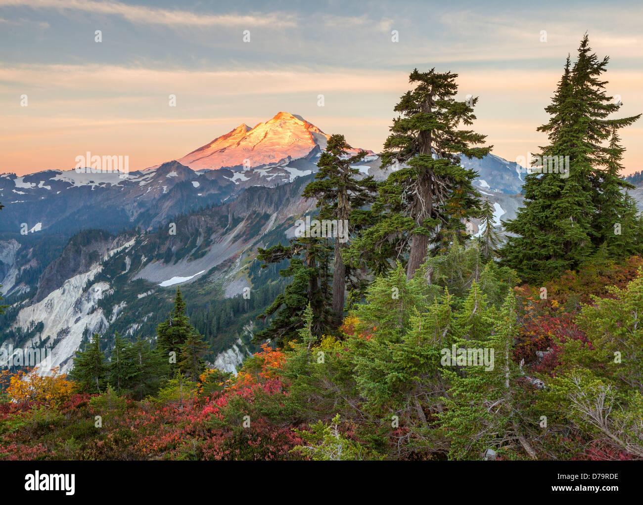 Mount Baker-Snoqualmie National Forest, WA: Mount Baker von Künstlern Ridge Trail, bei Sonnenaufgang Stockbild