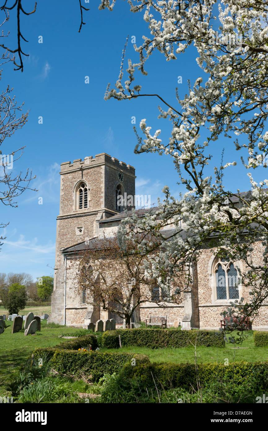 Die Pfarrkirche von St. Peter & St Paul trocken Drayton in der Nähe von Cambridge UK Stockbild