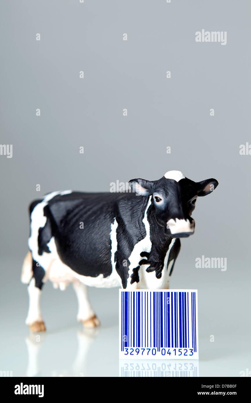 FOOD-KONZEPT Stockbild