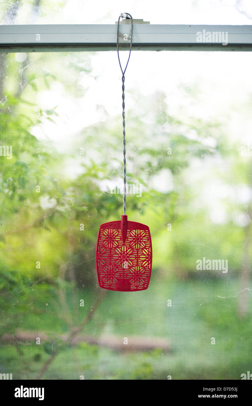 Red Flyswatter Stockfotos & Red Flyswatter Bilder - Alamy