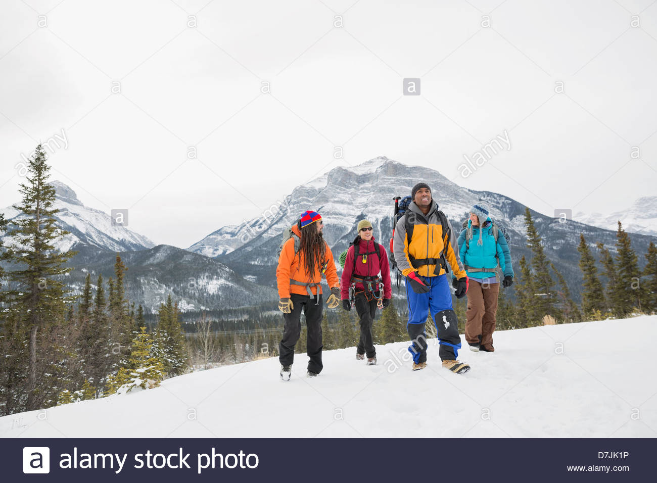 Gruppe von Freunden auf Winterwanderung in Bergen Stockbild