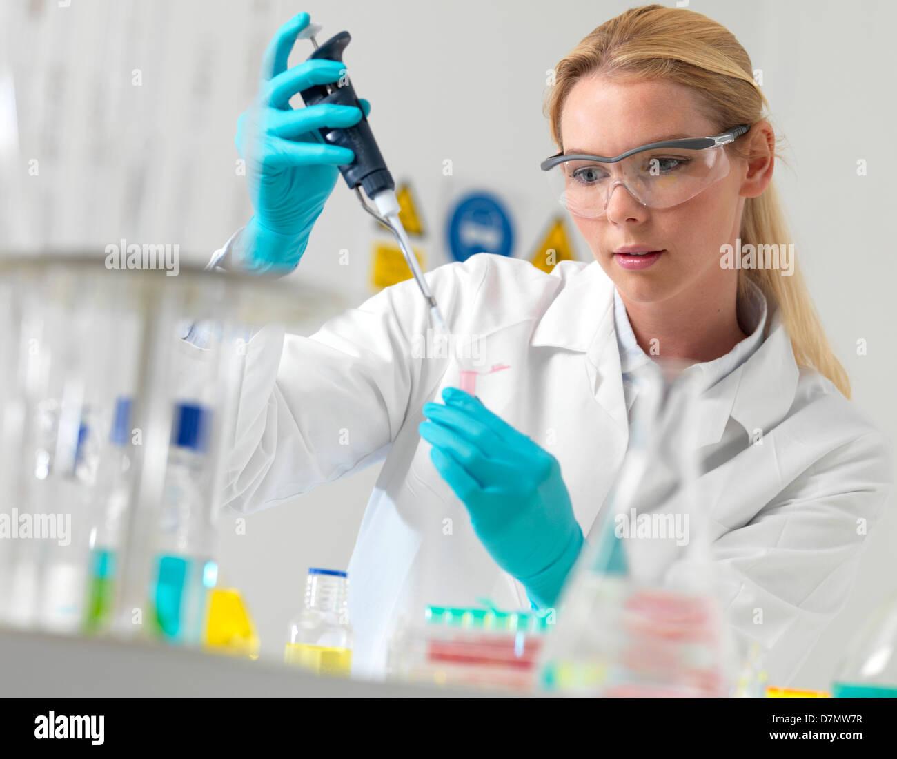 Forscher Pipettieren Flüssigkeit Stockbild