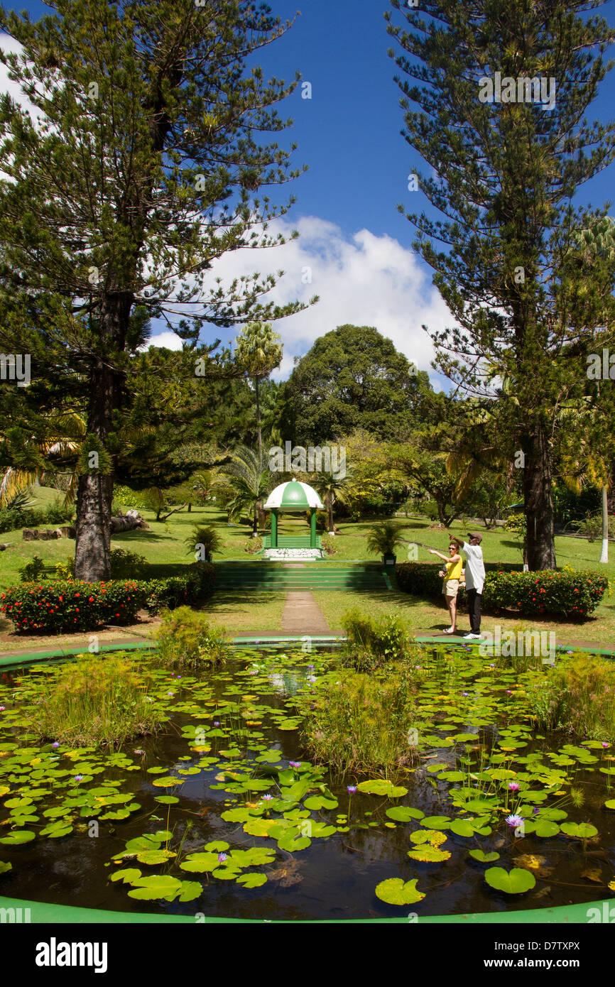 Botanische Gärten, Kingstown, St. Vincent, St. Vincent und die Grenadinen, Windward-Inseln, West Indies, Karibik Stockbild